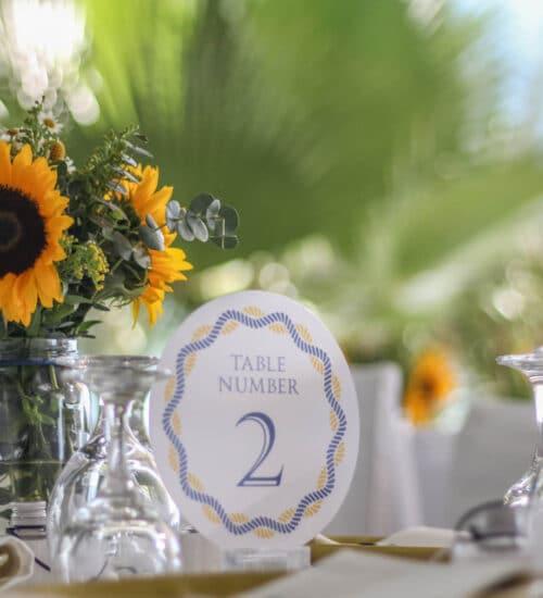 naxos-weddings-beach-8
